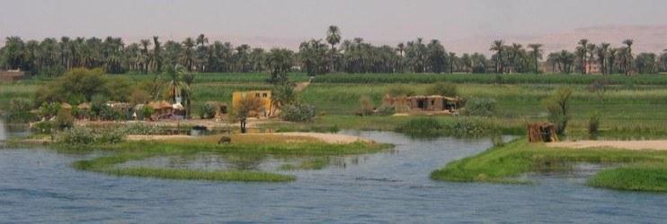 mise_evidence_appel_offre_regoko_strategy_egypt-742x250.jpg