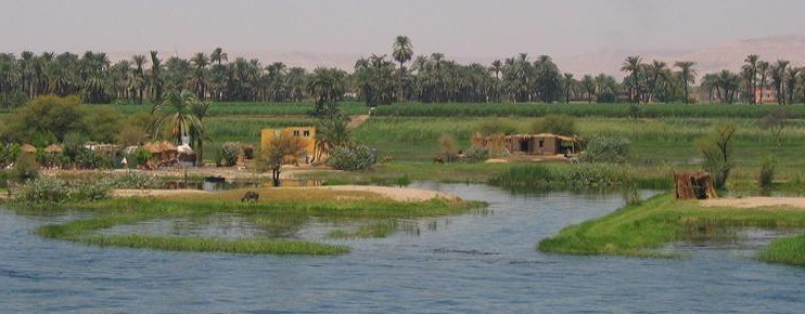 mise_evidence_appel_offre_regoko_strategy_egypt-742x290.jpg