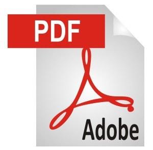 PDF-Icon-300x294.jpg